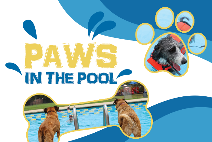 Paws-in-the-Pool-Web-Graphic